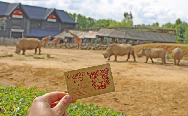 905d729bc90 Colchester Zoo is offering a discount on passes next month ...