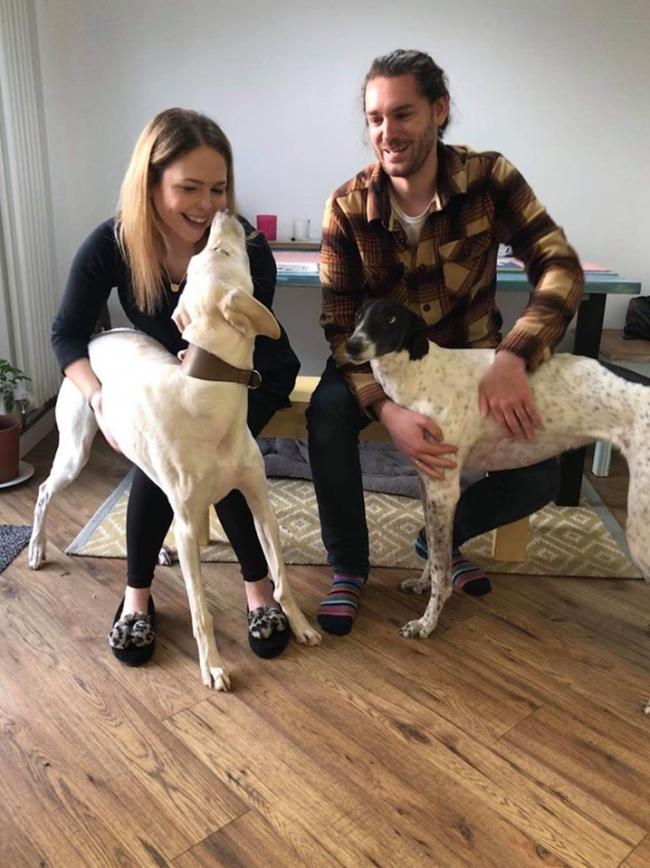 NEW FAMILY: Lurcher Jake has bonded loves playing with new friend Gilly the greyhound and Susanna and Keiran Jennings