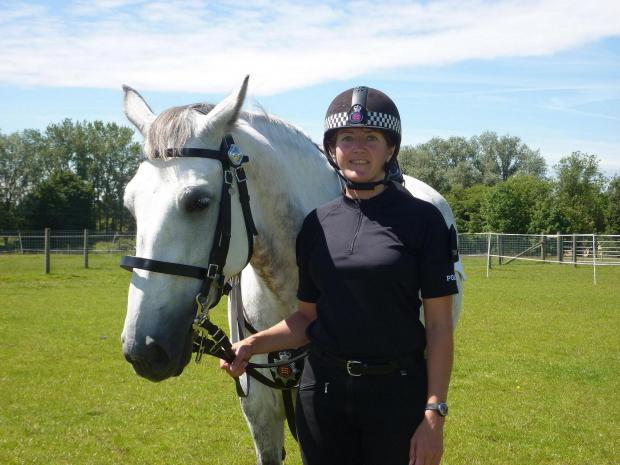 Essex: Police mounted unit set to be cut