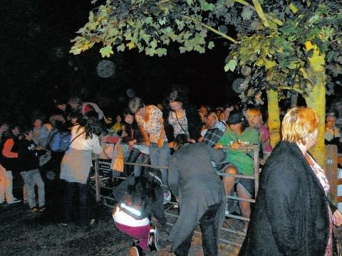Halstead Gazette: Fans attempt to leave the gig