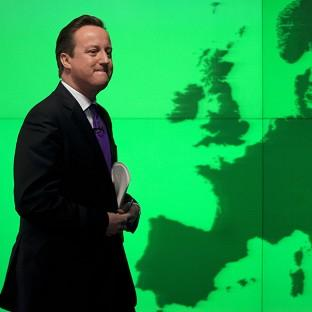 David Cameron said he would campaign with 'heart and soul' for Britain to stay in the EU (AP)