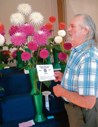 Halstead: Photography winners to be announced at flower show