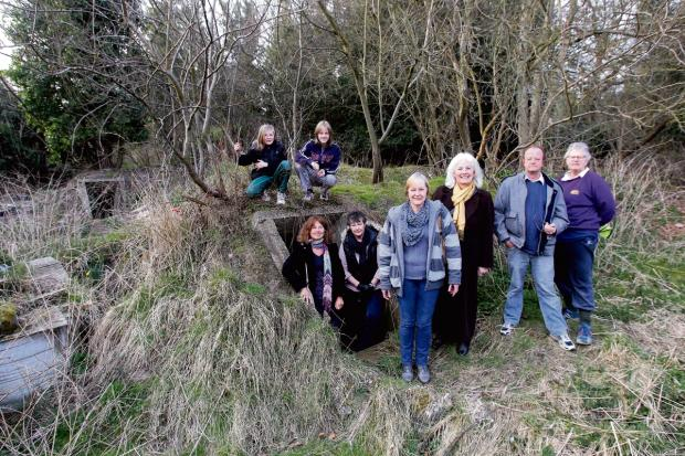 Petition launched in bid to stop woodland being sold to developers