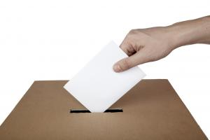 ELECTION 2015: Echo launches dedicated section for south Essex seats