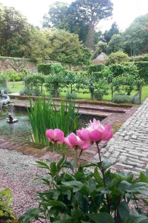 Discover gardens and allotments in Colne Engaine