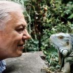 Halstead Gazette: Sir David Attenborough at 90: 11 of his best moments to remember