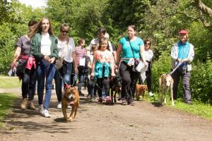 Halstead Gazette: In Pictures: Pooches take stroll through countryside in animal home fundraiser