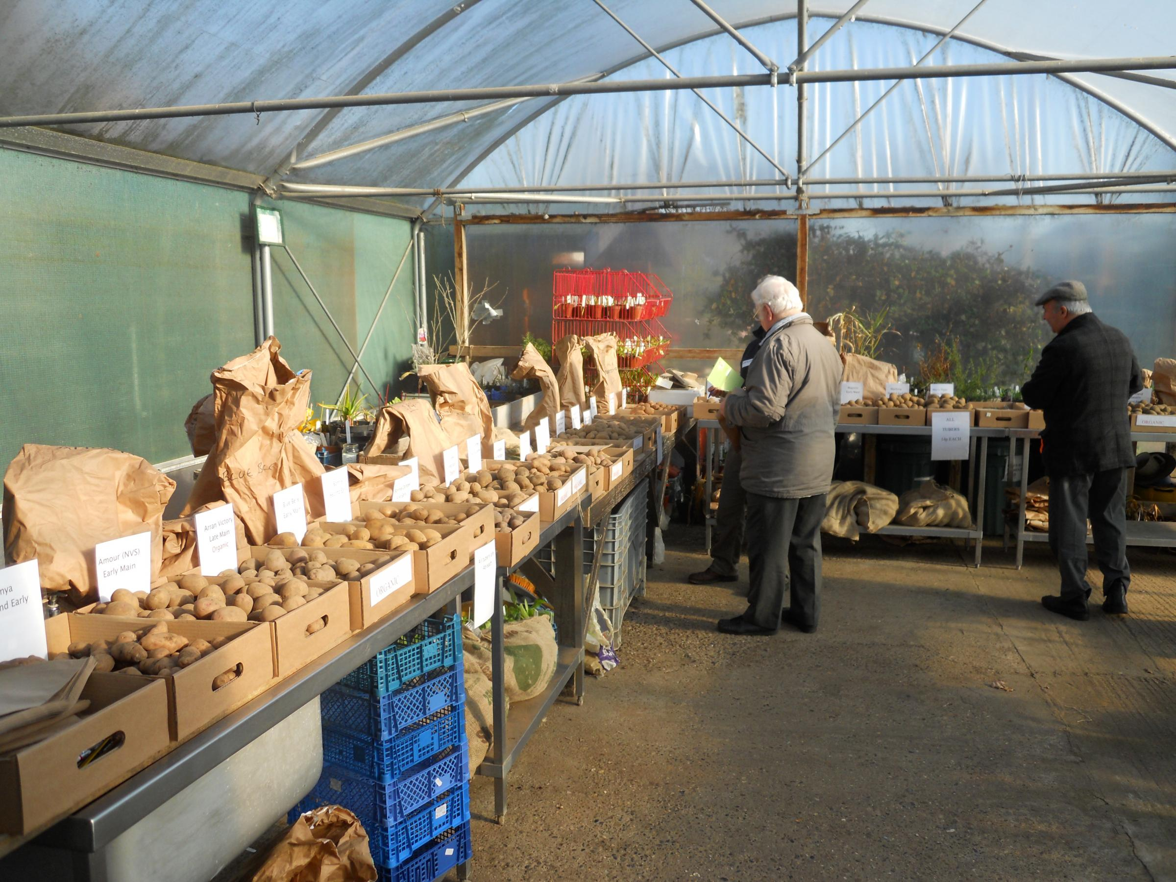 SE Essex Seed Potato Day 2018