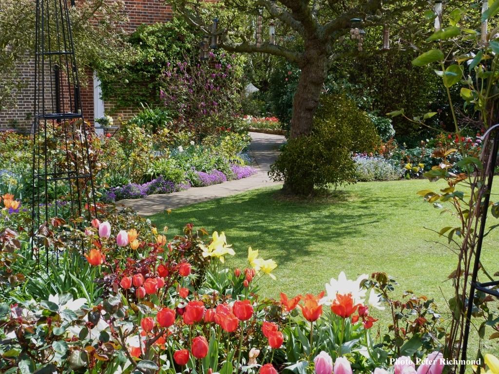 The National Garden Scheme Open Garden