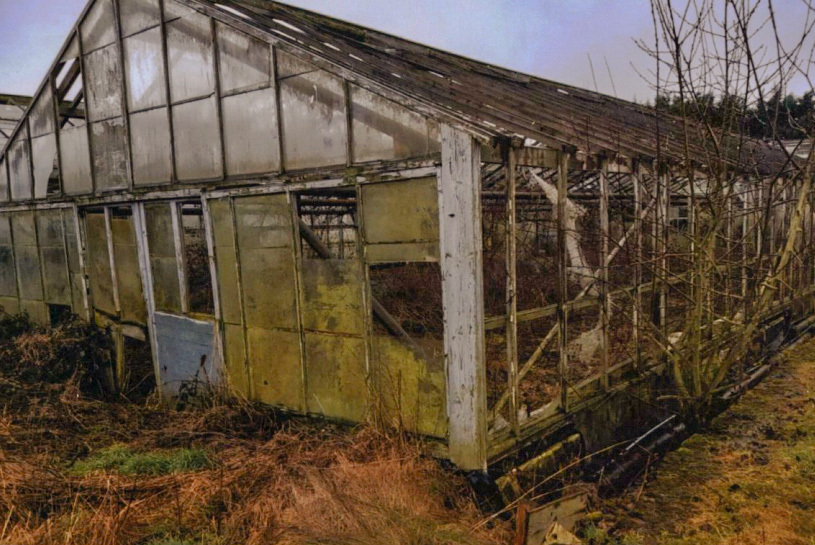 DELAPIDATED: Two greenhouses at the site have fallen into disrepair